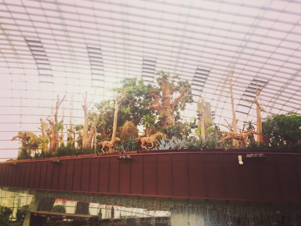 Singapour - Gardens By The Bay _1977