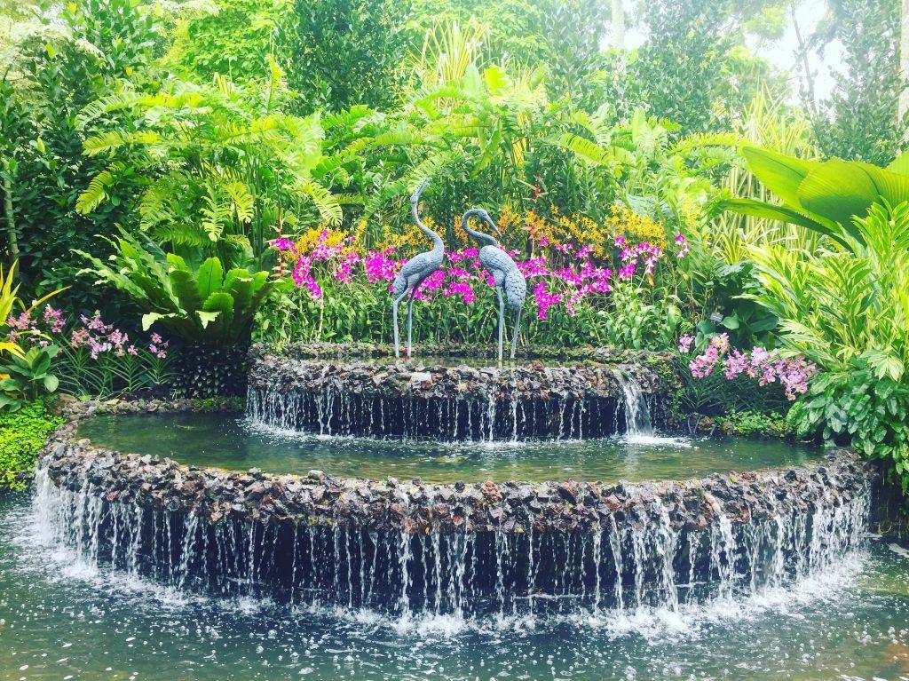 Singapour - Botanic Garden